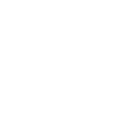 Icone - Carport bois - Garage voiture - O2bois